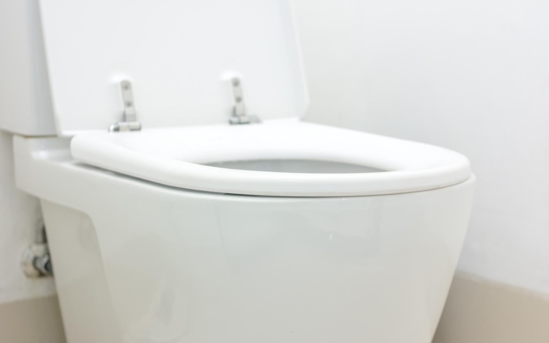 Montreal Toilet Repair